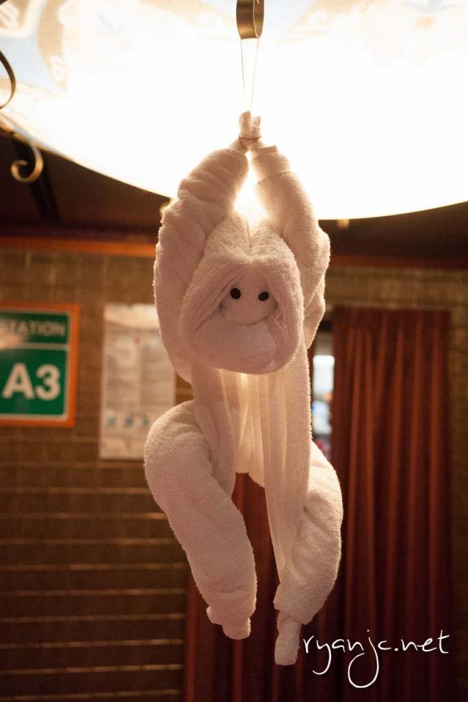 This monkey was hanging at the door to the towel animal folding class.
