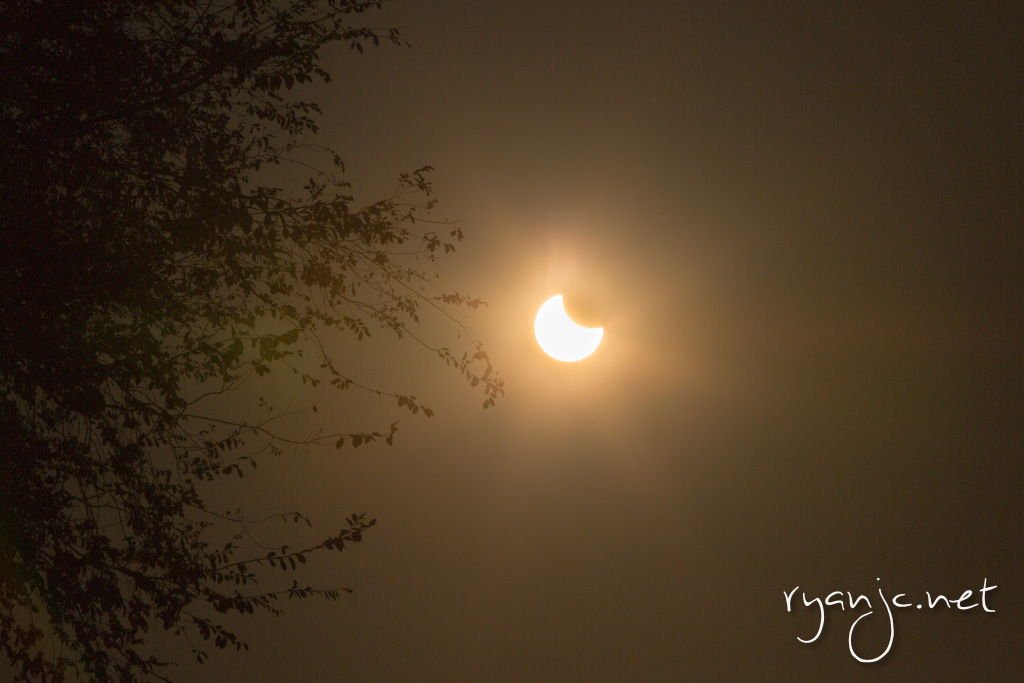 Partial solar eclipse - my front yard