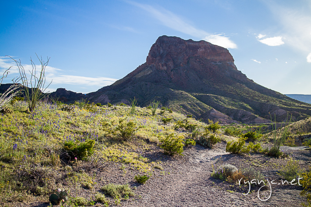 Cerro Castellan at Big Bend National Park. View from Tuff Canyon. Taken April 20, 2015. Big Bend National Park is a gorgeous and very scenic national park. Secluded from nearby towns, it's worth the drive from Texas's major cities. Having visited dozens of other National Parks, it's quite like any other. The terrain, geography, and different ecosystems are very unique making it a must see. From end to end, you can traverse mountains, forests, deserts, canyons, plains, and rivers.
